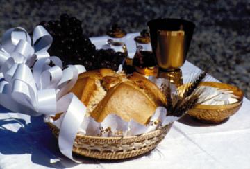 Ogłoszenia duszpasterskie – 13. Niedziela zwykła (28.06)
